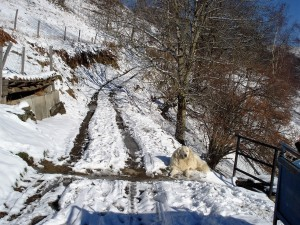 départ-gite-neige